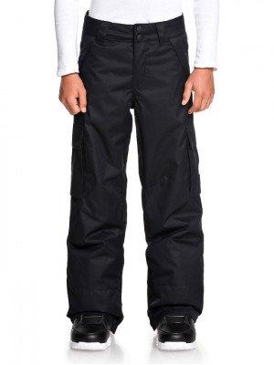 DC DC Banshee Pants zwart