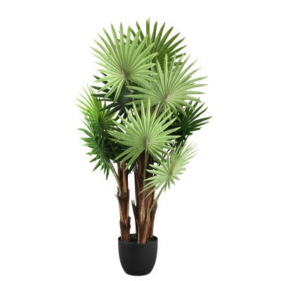 Firawonen.nl Tree green chinese fan palm tree in black plastic