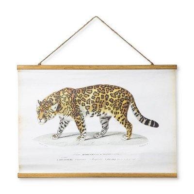 Xenos Vintage poster - luipaard - 70 x 50 cm