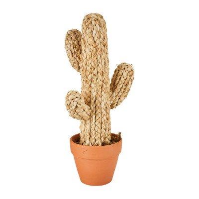 Xenos Cactus in pot - beige - 50 cm