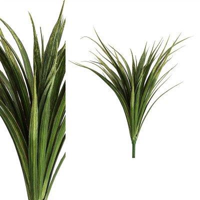 Firawonen.nl PTMD leaves plant donker groen gras struik
