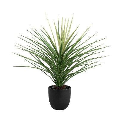 Firawonen.nl PTMD tree groen yucca boom in zwarte plastic pot