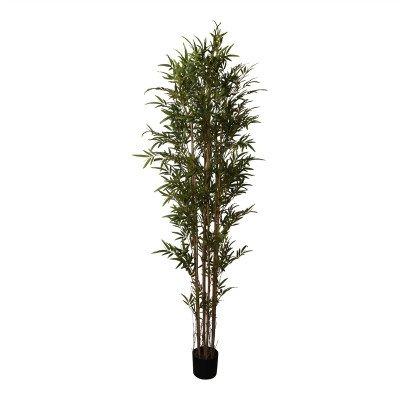 Firawonen.nl PTMD Tree green bamboo tree in black plastic pot l