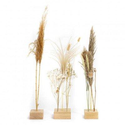 Growing Concepts Freya - Eiken standaard set van 3 10cm / 55cm / Droogbloemen
