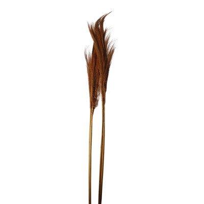 Firawonen.nl Ptmd gedroogde twig rust bamboe steel klein