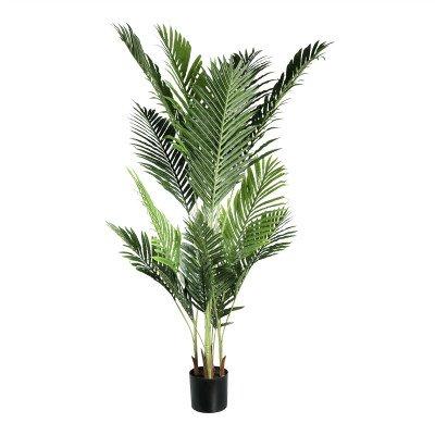 Firawonen.nl PTMD tree groen palm blad boom