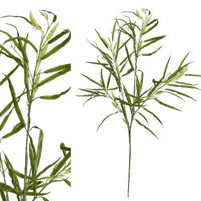 Firawonen.nl PTMD leaves plant groen salix with bloem tak