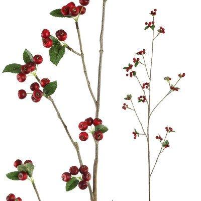 Firawonen.nl Berry plant dark red wild berry spray