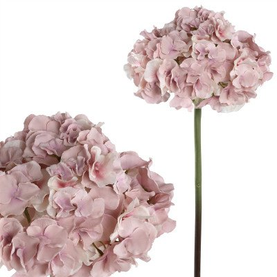 Firawonen.nl PTMD Hydrangea bloem pink hydrangea stem s