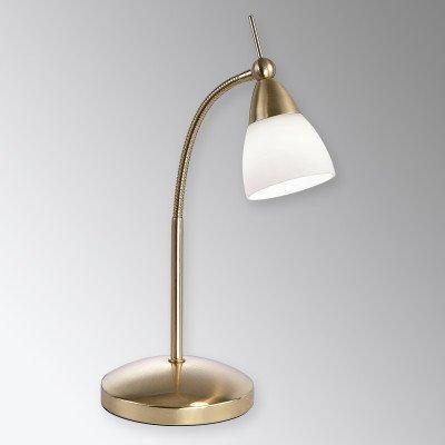 PAUL NEUHAUS Messingkleurige LED tafellamp Pino met dimmer
