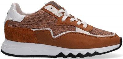 Floris van Bommel Cognac Floris Van Bommel Lage Sneakers 85334