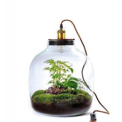 Growing Concepts Hebe Lamp 47cm / 34cm / Botanisch